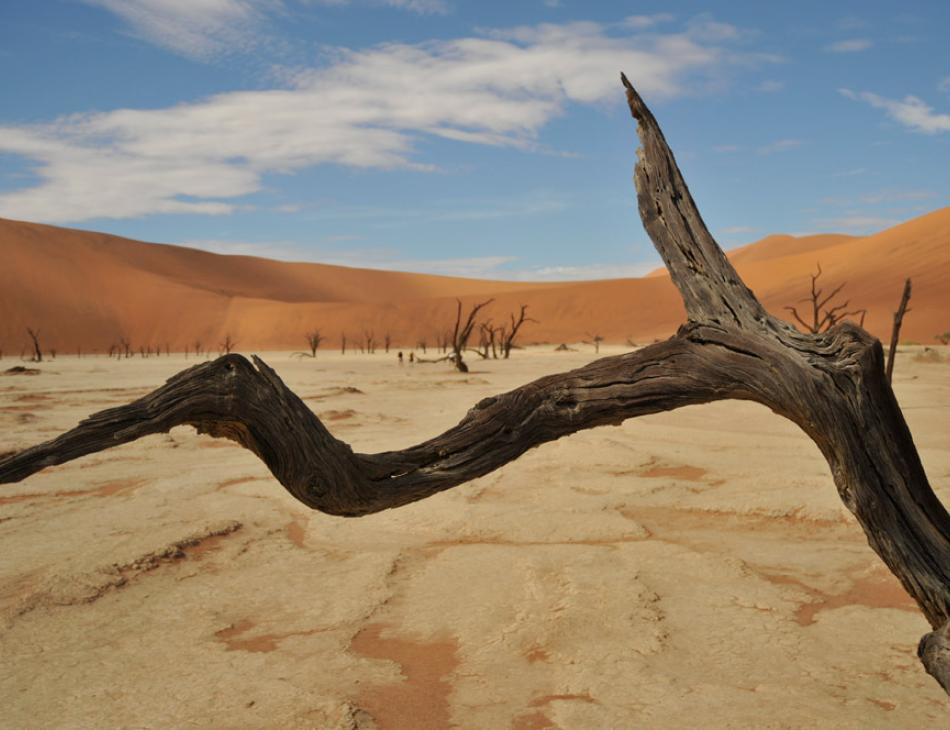 Namibia Luxury Flying Safari